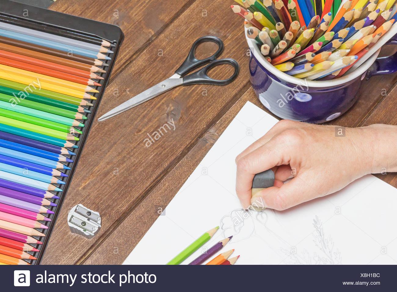 Drawing Of Flowers Stockfotos & Drawing Of Flowers Bilder - Alamy