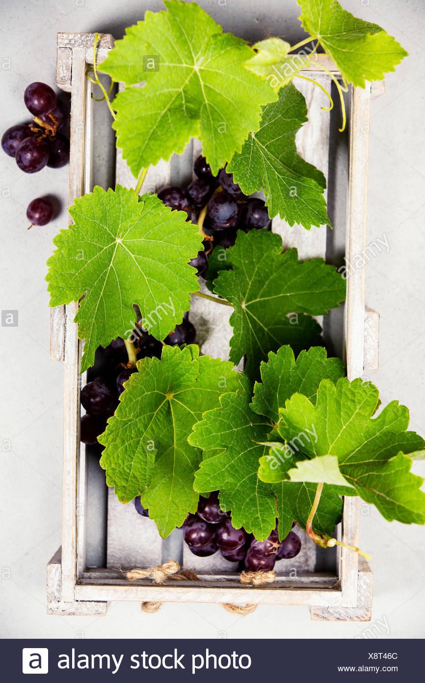 Frische Trauben in einer Holzbox. top View Stockbild