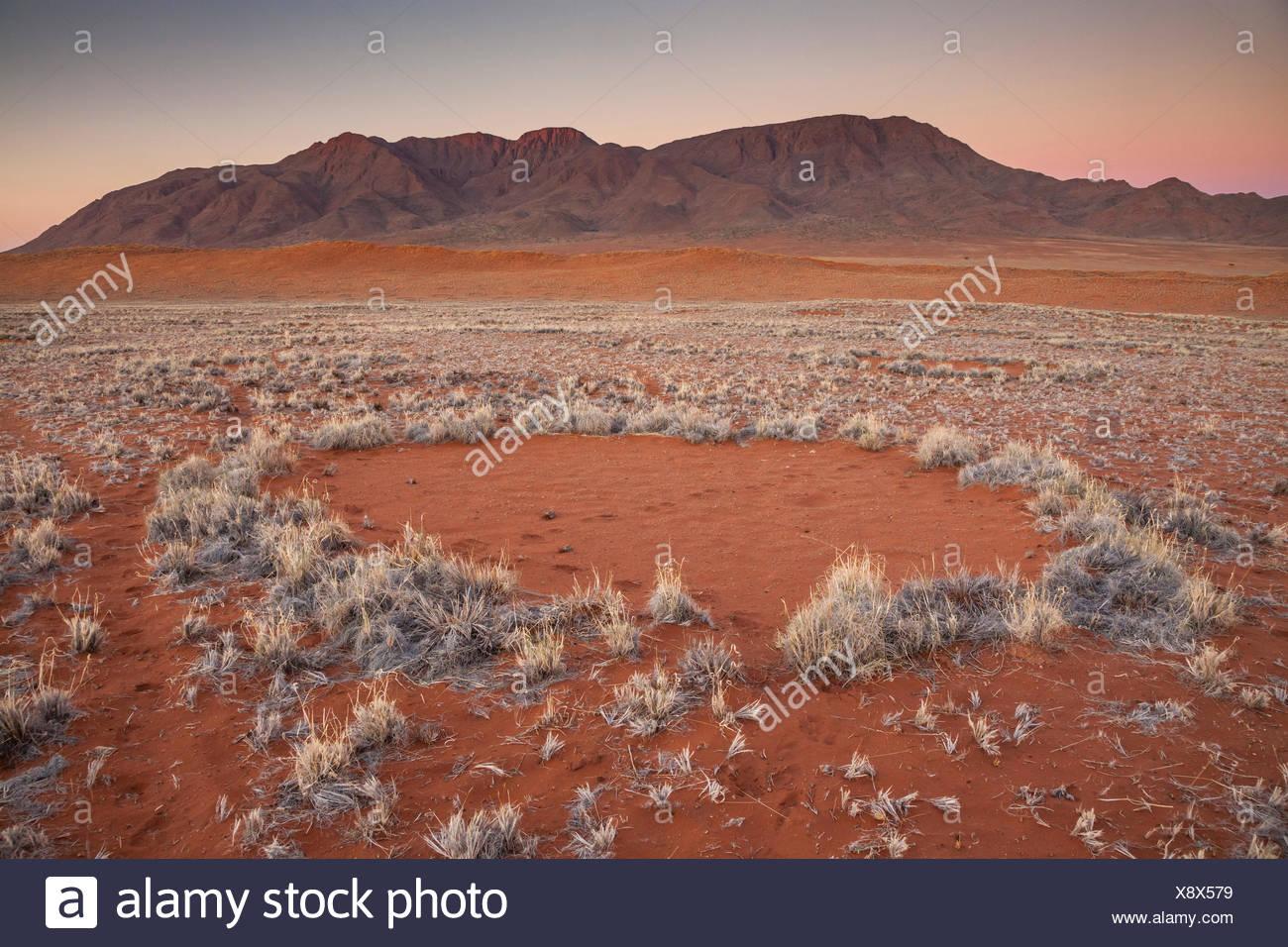 Fairy Kreis bei Sonnenuntergang in der Wüste Namib, Namibia. Es hat vor kurzem festgestellt, dass diese Muster durch eine Mischung von Termiten mit der Aktion der Gräser im Wettbewerb um Wasser verursacht werden. Stockbild