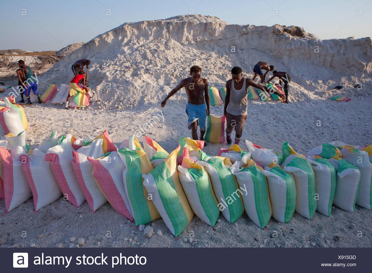 Salzgewinnung, Stubenmaedchen, Afrera, See, Afrika, Salz, Äthiopien, Arbeiter, Taschen Stockbild