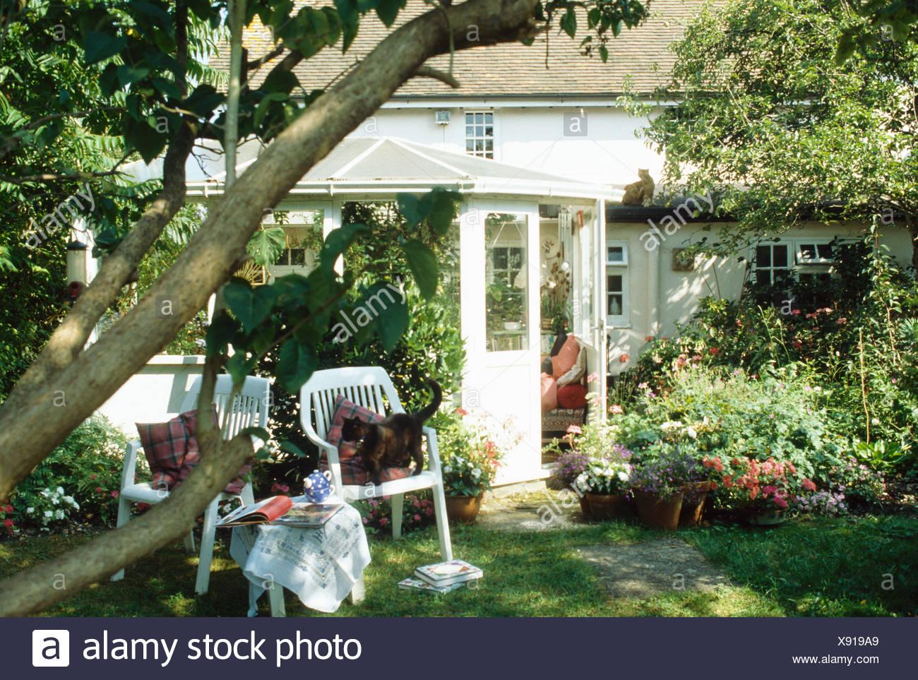 Weiße Kunststoffstühle Unter Baum Im Garten Des Weißen Landhaus Mit