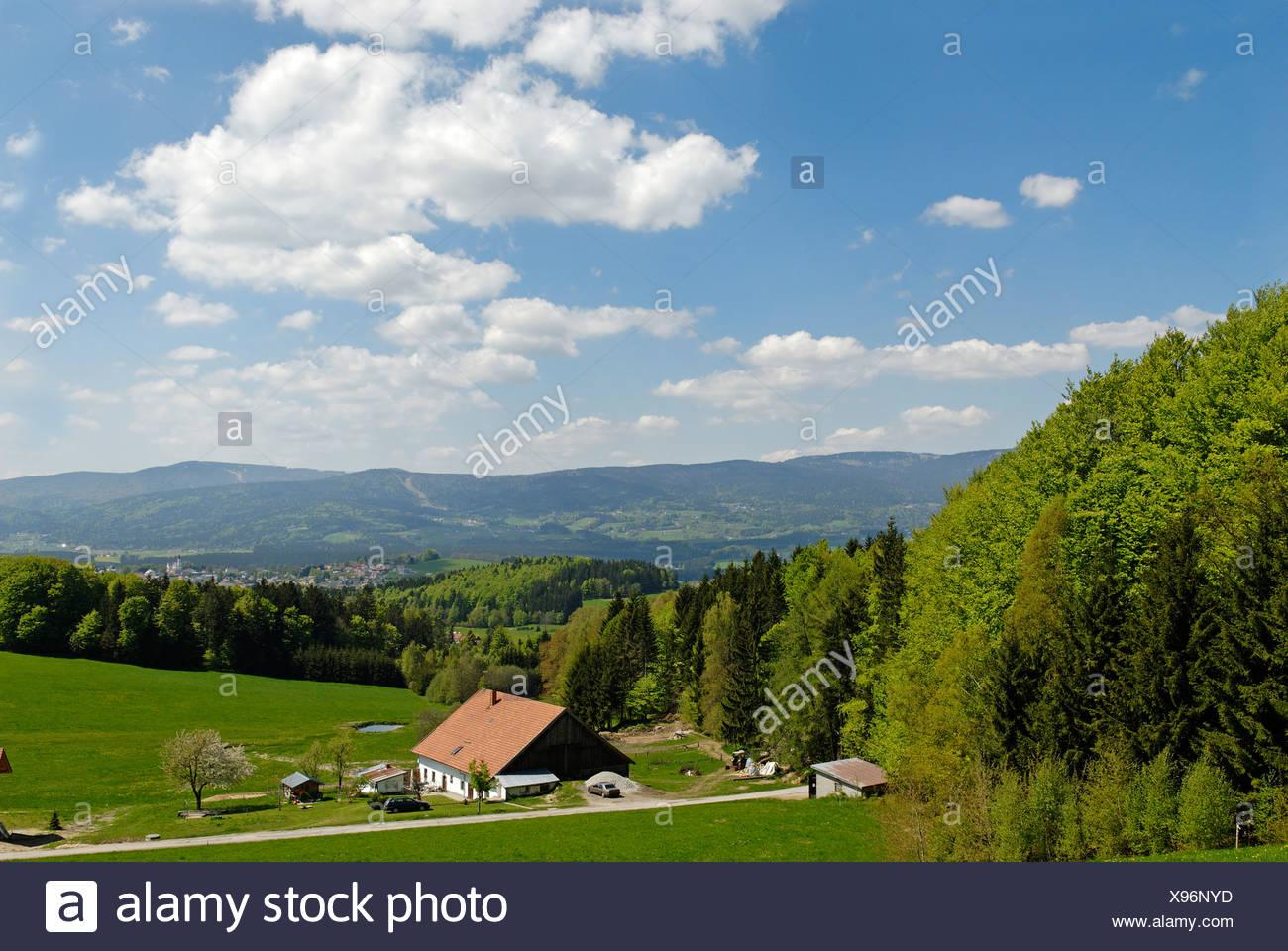 In der Nähe von Breitenberg, Bayerischer Wald, untere Bayern, Deutschland, Europa Stockbild