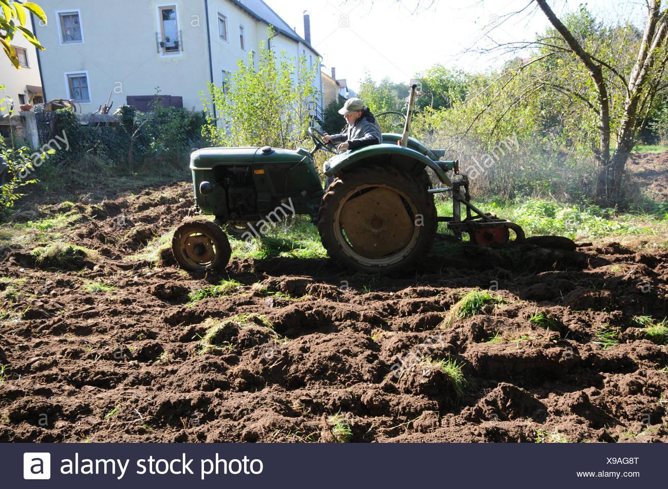 Das Pflugen Des Bodens Mit Alten Traktor Stockfoto Bild 281130104