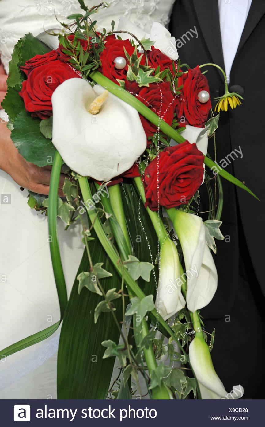 Blume Blumen Pflanzen Rosen Rot Hochzeit Heirat Hochzeit Zeremonie
