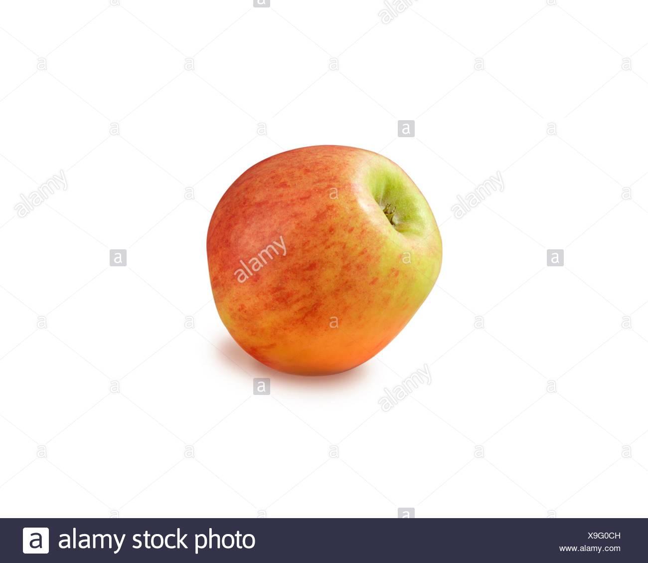 Großzügig Apfelbaum Färbung Seite Bilder - Beispiel Anschreiben für ...