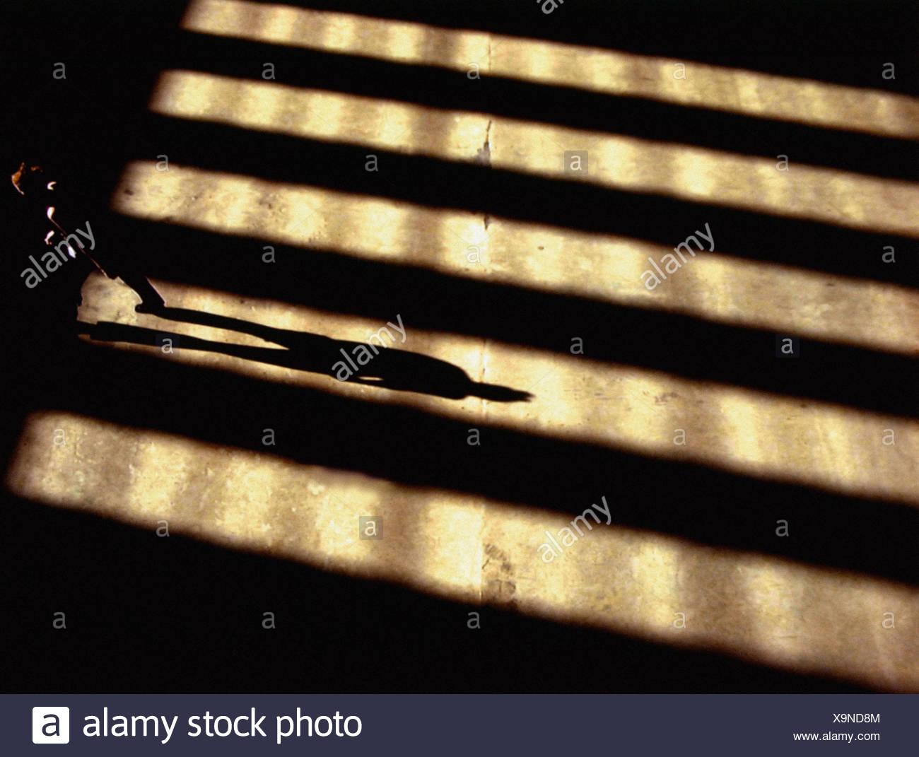 Person, die im Schatten stehen Stockbild
