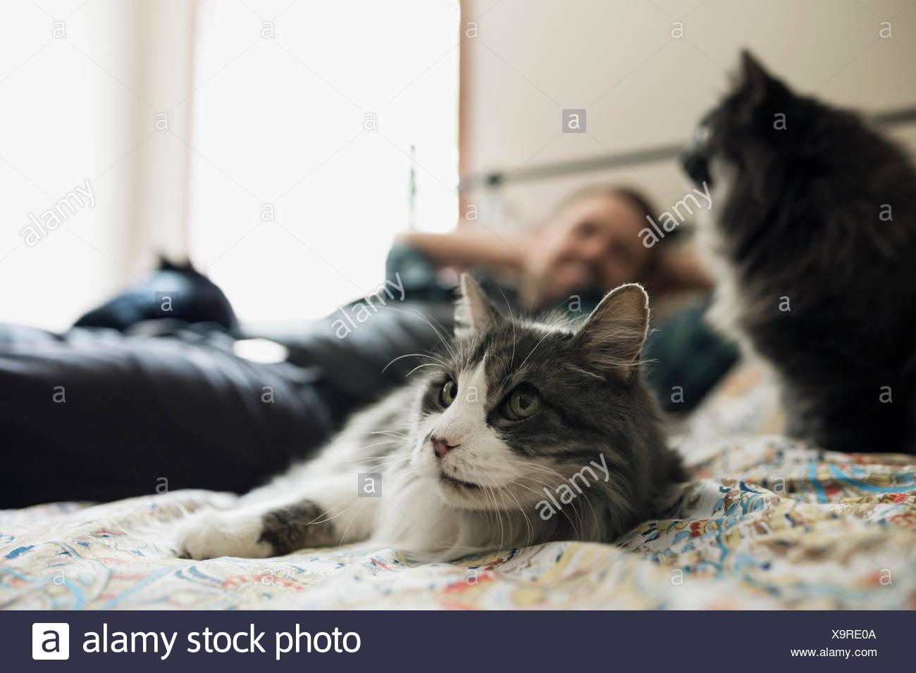 Frauenbeine im winter katze