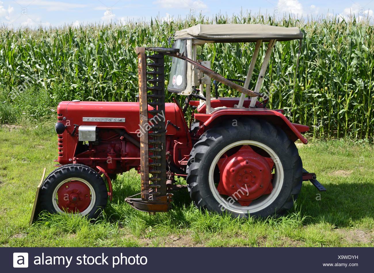 alten traktor mit mähwerk vor einem maisfeld jahrgang