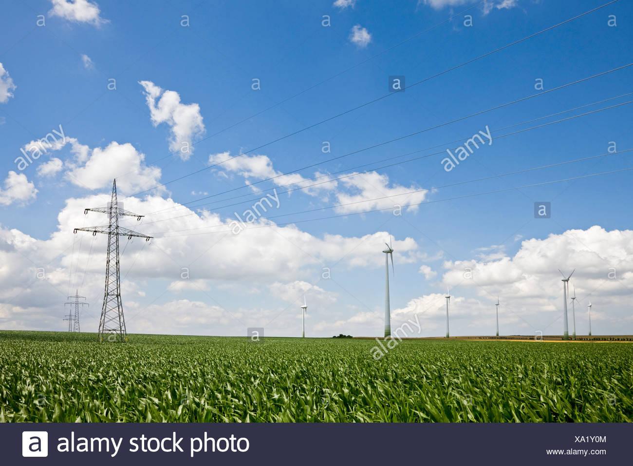 Deutschland, Sachsen-Anhalt, Bereich von Windkraftanlagen und Strommasten Stockbild