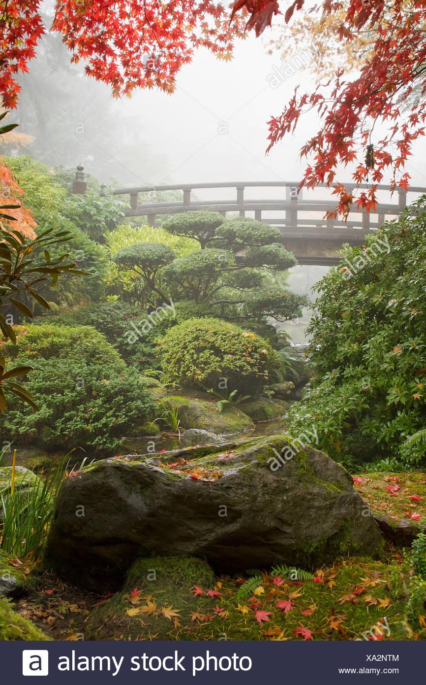 Baum Bäume Garten Brücke Stream Frisches Wasser Teich Wasser