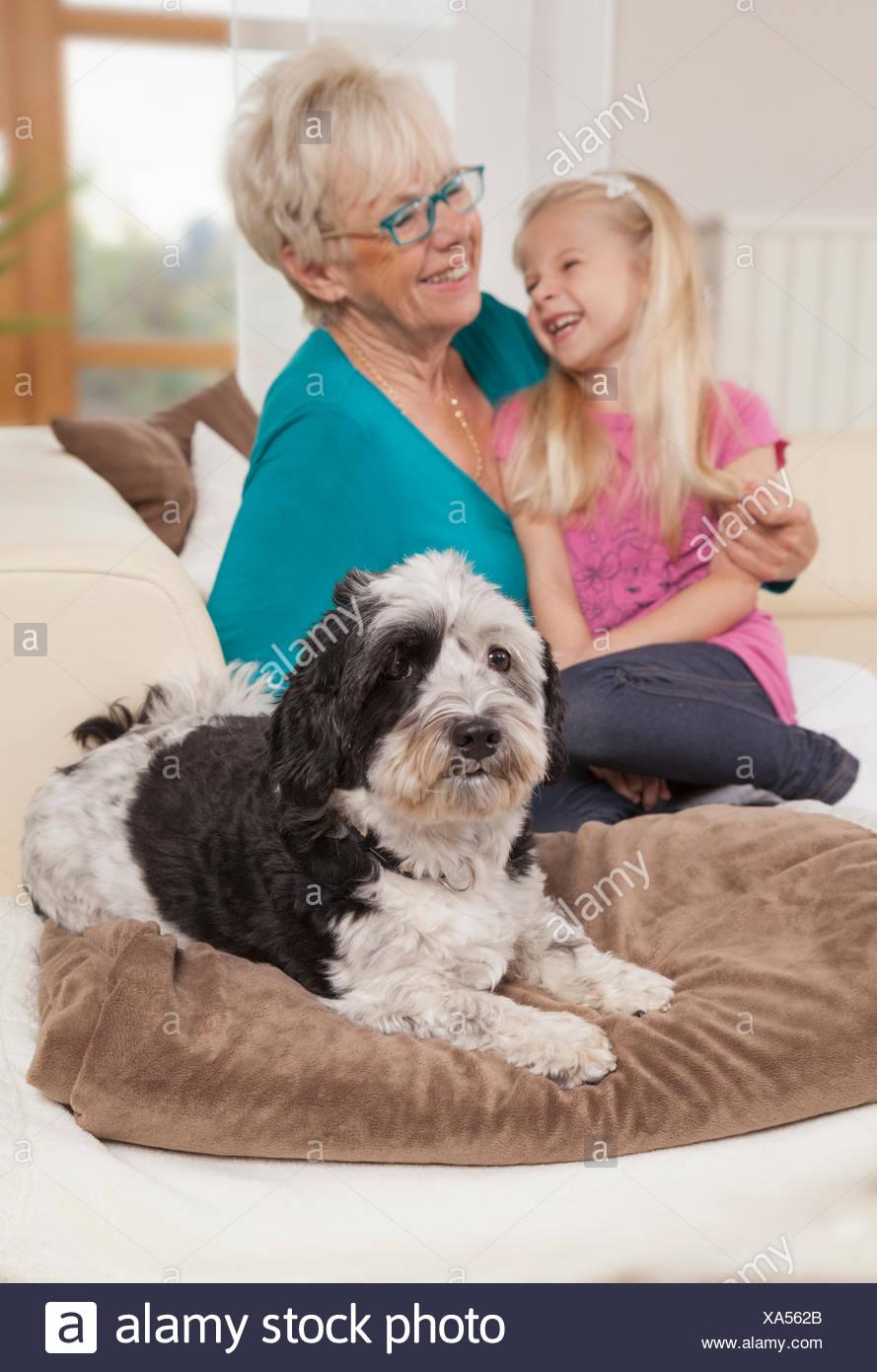 Ältere Frau mit Hund und Enkelin Lachen im Wohnzimmer, Bayern, Deutschland Stockbild