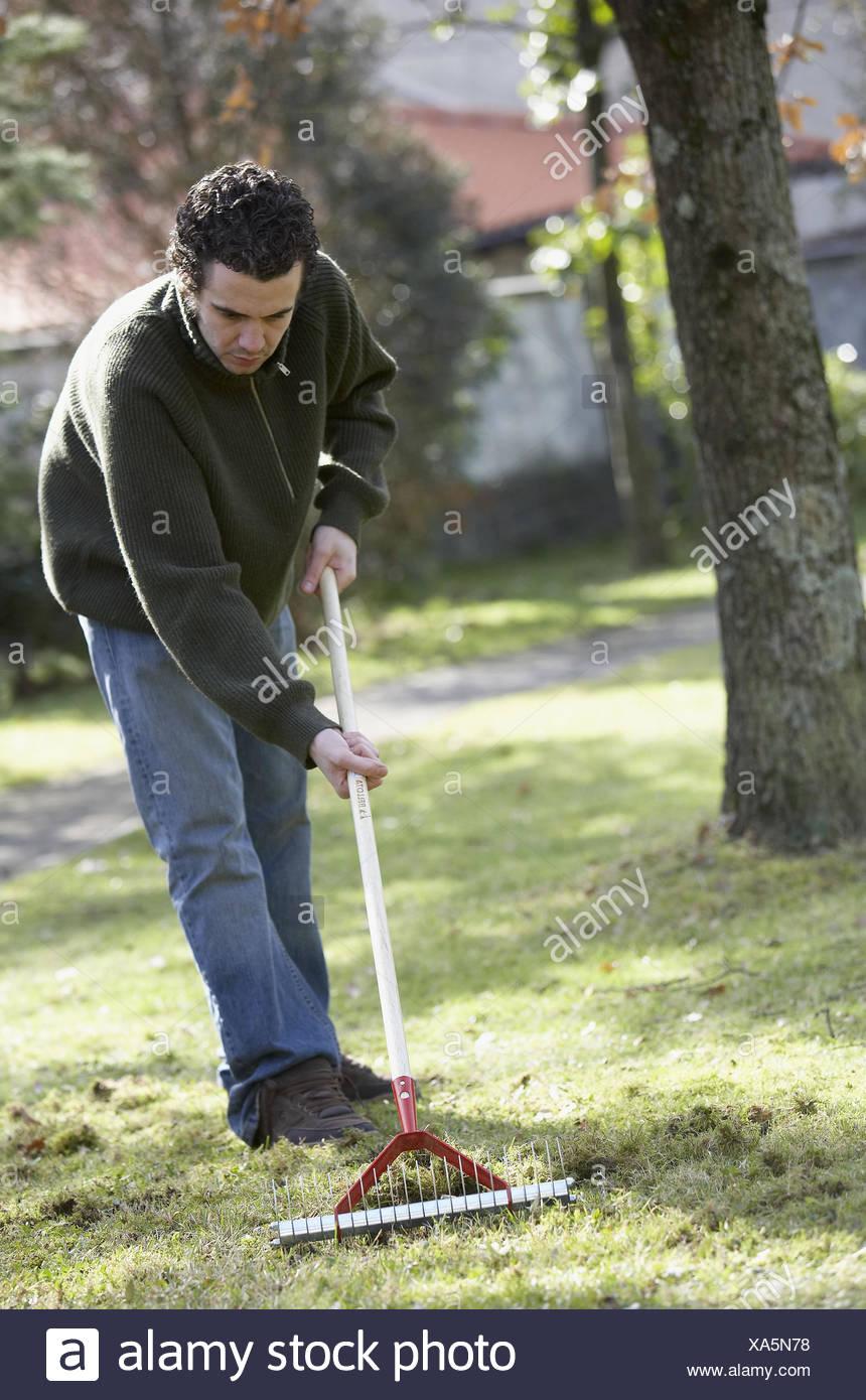 Entfernen Moos Aus Rasen Mit Garten Werkzeug Im Garten Gipuzkoa
