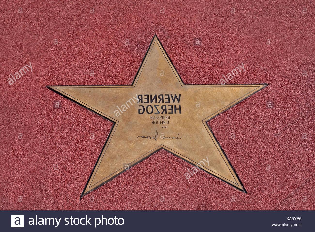 Stern von Werner Herzog, Boulevard der Stars, Spaziergang von Sternen, Platz, Potsdamer Platz Berlin, Deutschland, Europa Stockbild