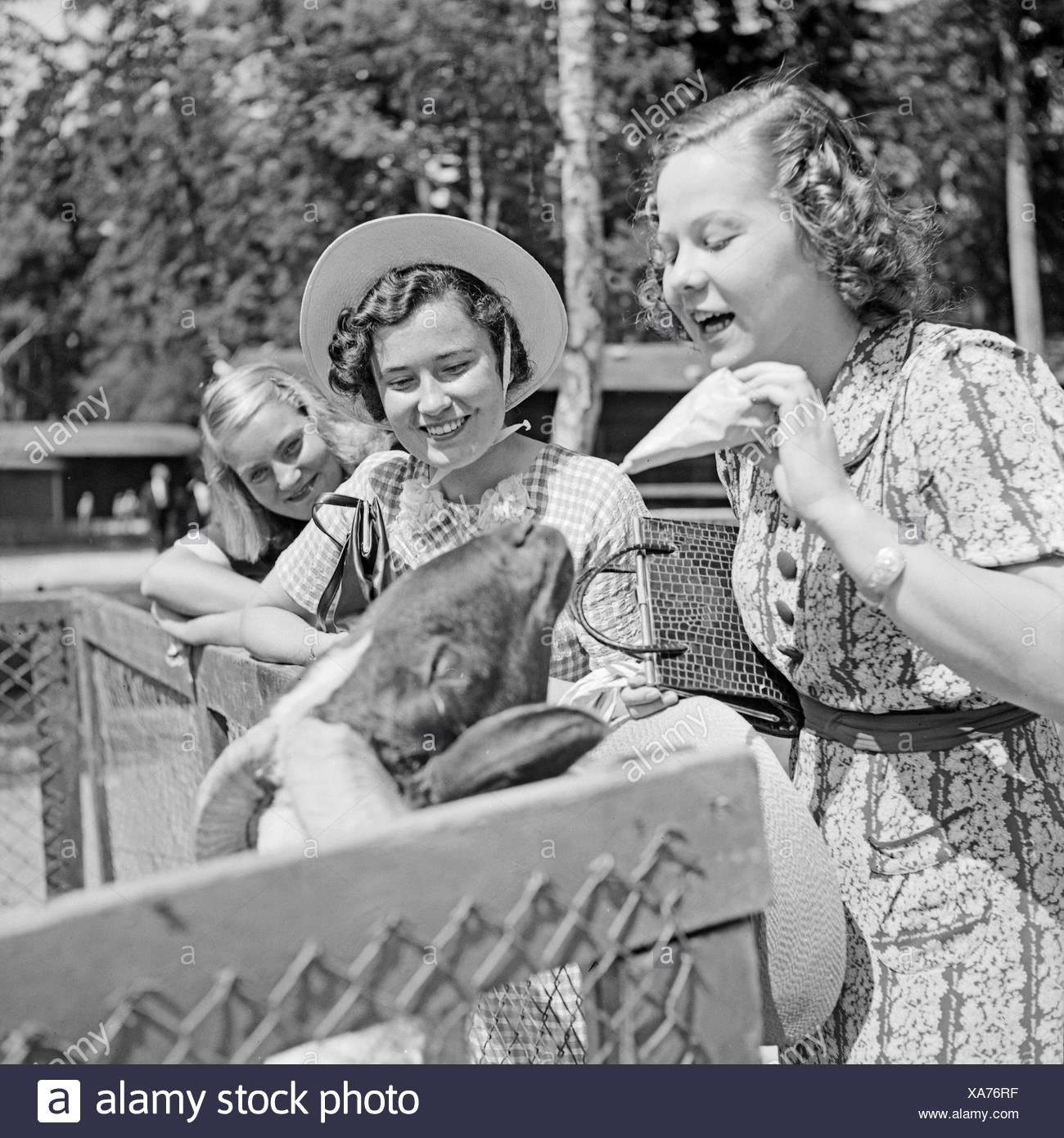 Drei Junge Frauen bin Ziegengehege Im Wilhelma Tierpark in Stuttgart, Deutschland, 1930er Jahre. Drei junge Frauen bei der Ziege Verbindung an Wilhelma Zoologischer Gärten in Stuttgart, Deutschland der 1930er Jahre. Stockbild