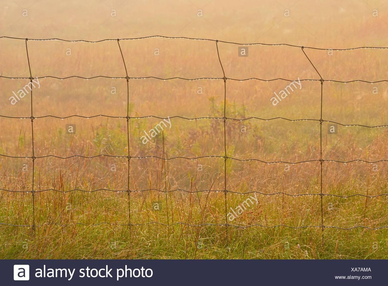 Zaun Und Tau Fallt Grossere Sudbury Walden Ontario Kanada