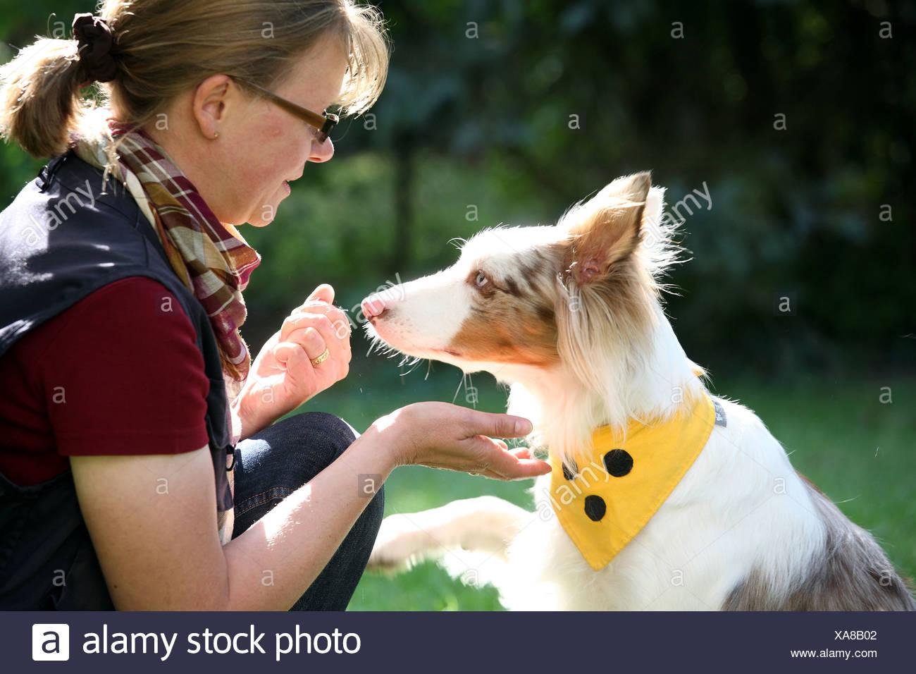 Berlin, Deutschland, die Hunde-Physiotherapeutin Petra Herrmann und ihr Hund Sky Stockbild