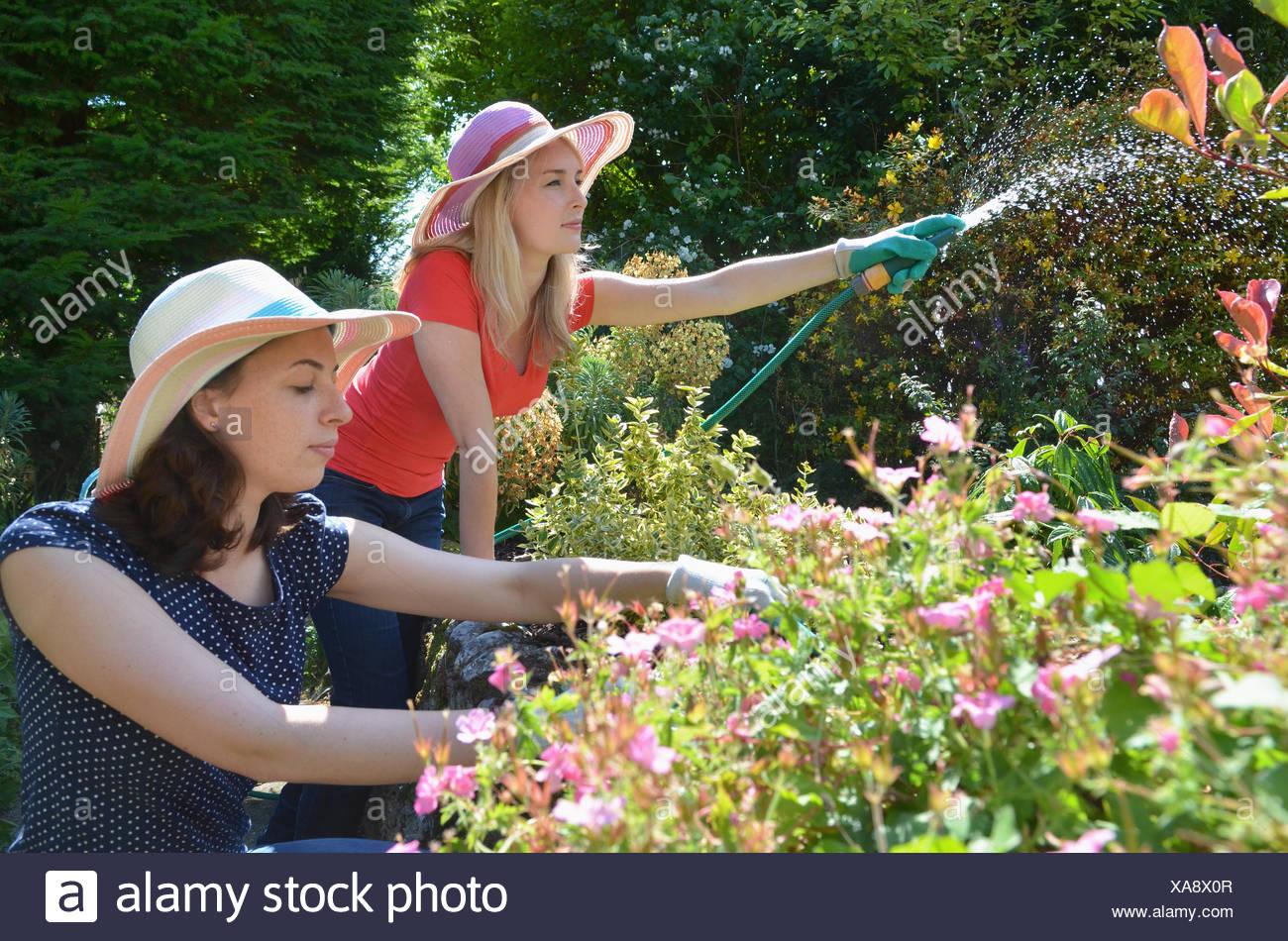 Junge Frauen, die Gartenbewässerung mit Schlauch Stockbild