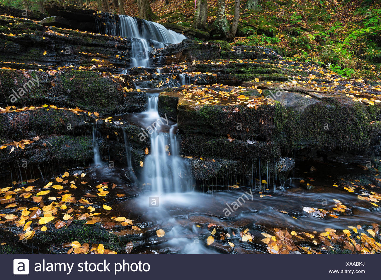 Herbst Wasserfall Beecher Creek, Edinburg, New York, USA. Stockbild