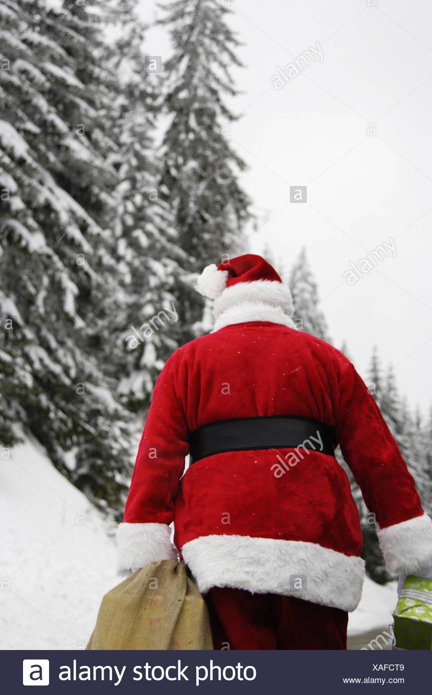 Winter Holz, Santa Claus, Beutel, Geschenke, Carry, zurück Blick ...