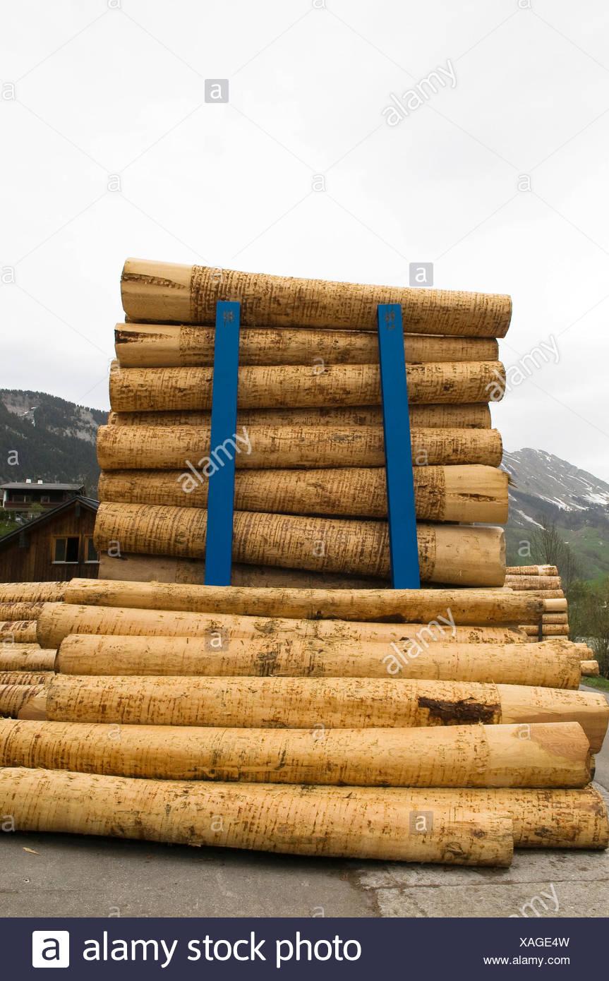 Protokolle Sägewerk Holzhandel Holzlagerung Bauholz Oder Bauholz