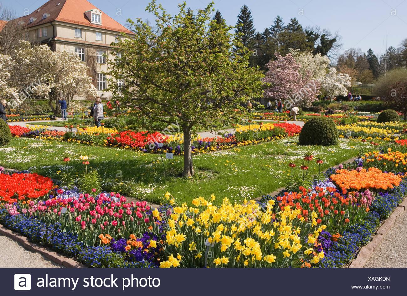 Botanischer Garten München Nymphenburg Botanischer Garten Ca 16