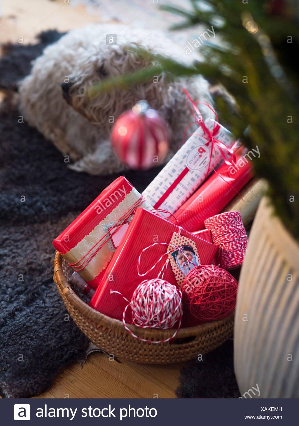 Weihnachtsgeschenke in Korb mit Hund liegend auf Hintergrund ...