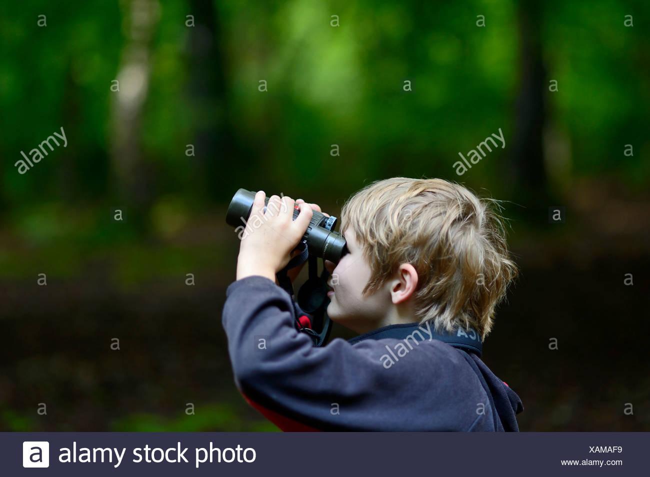 Junge Vögel beobachten im Wald Norfolk Sommer Modell veröffentlicht Stockbild