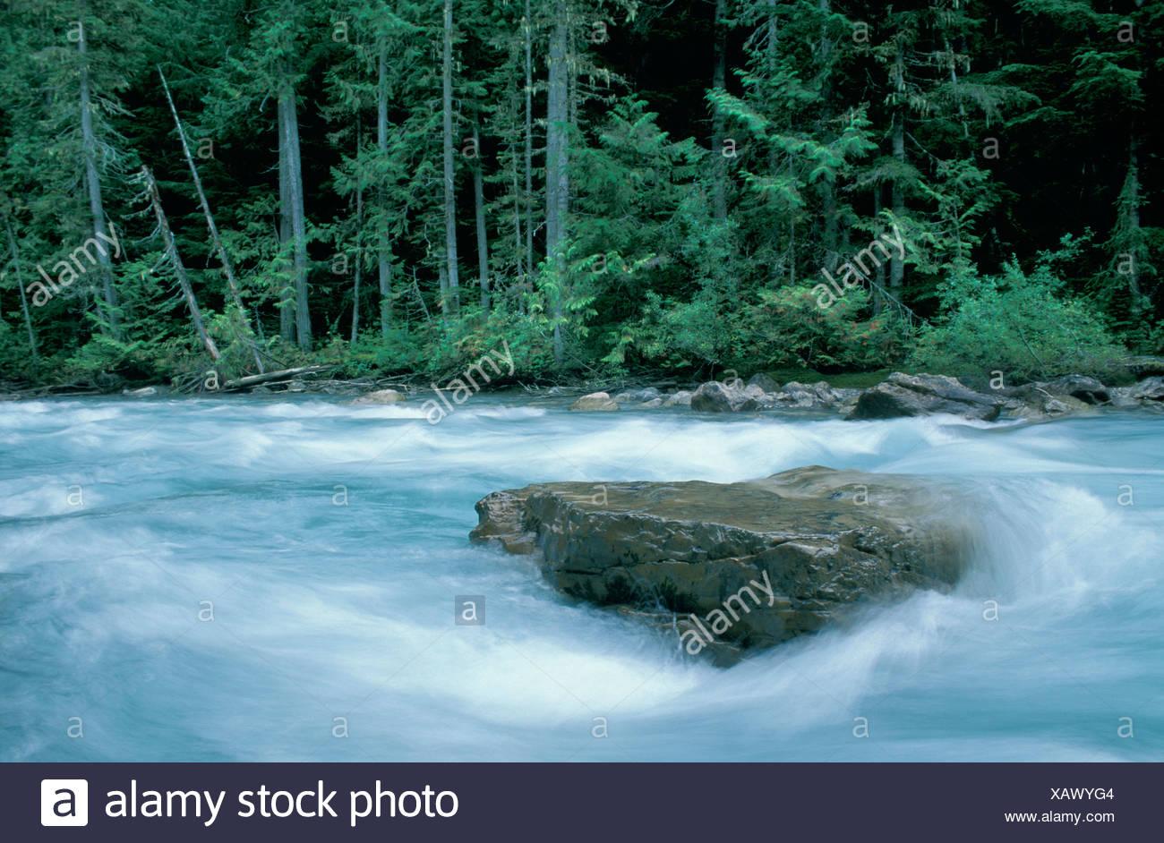 Britisch-Kolumbien Kanada Nord Amerika Amerika Robson River Berg Lake Trail Mount Robson Provincal Park Wasser b Stockbild