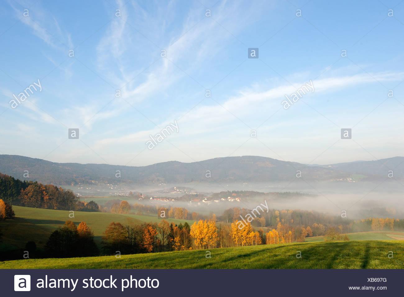 Lalling, Bayerischer Wald, untere Bayern, Deutschland, Europa Stockbild