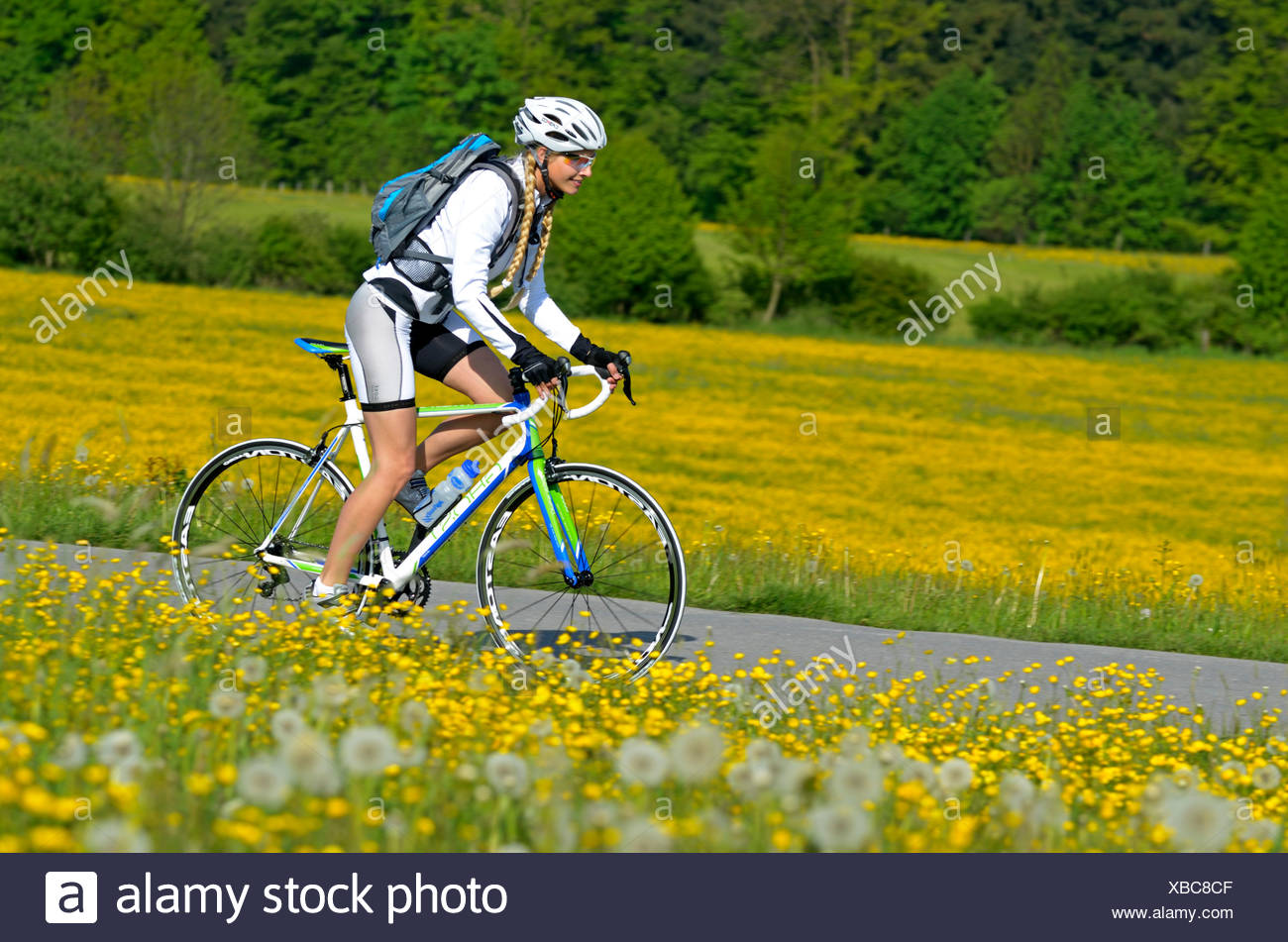 Chiemsee Radweg Chiemsee Alpenland Tourismus