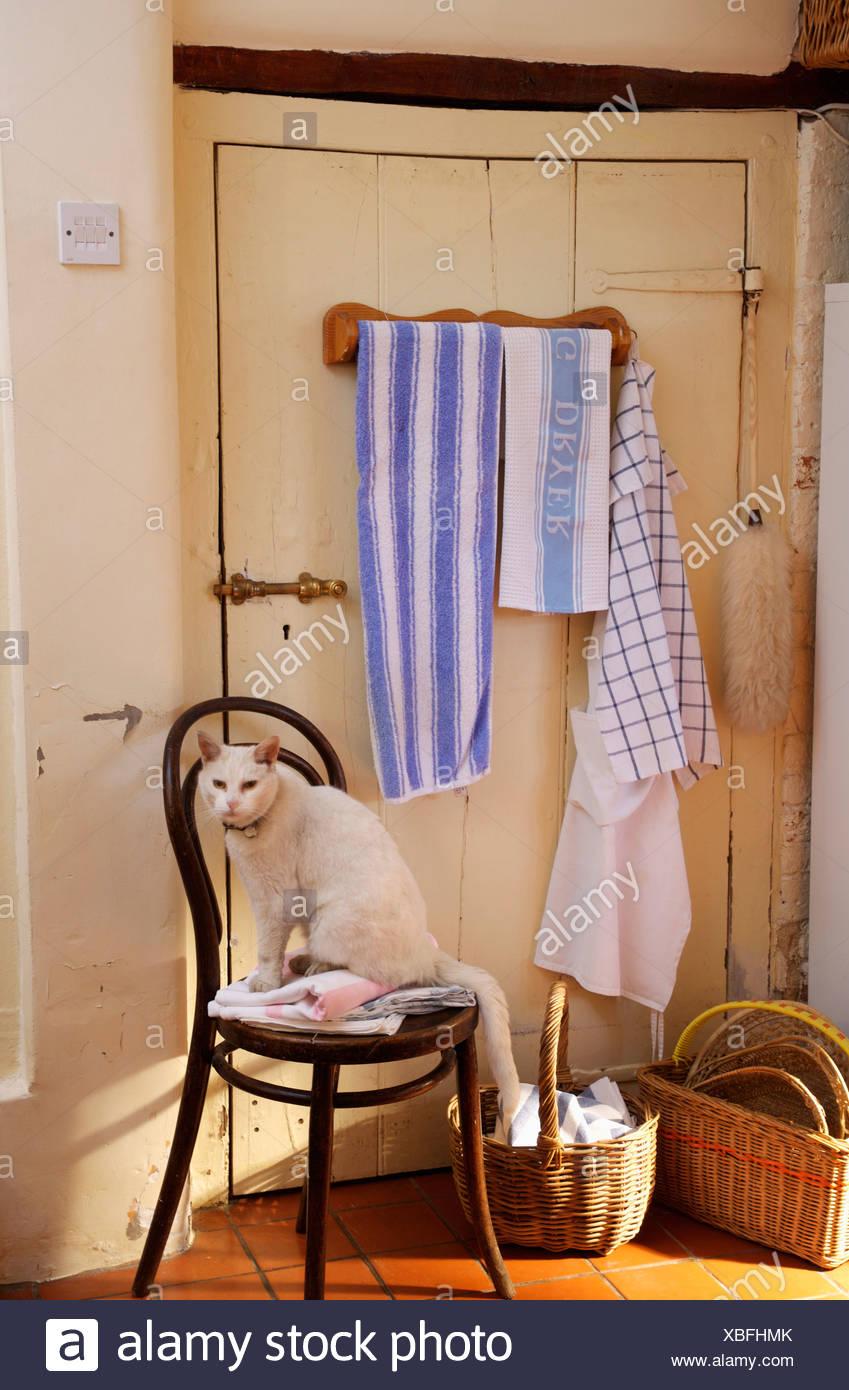 Berühmt Küchenstuhl Schiene Bilder Fotos - Ideen Für Die Küche ...