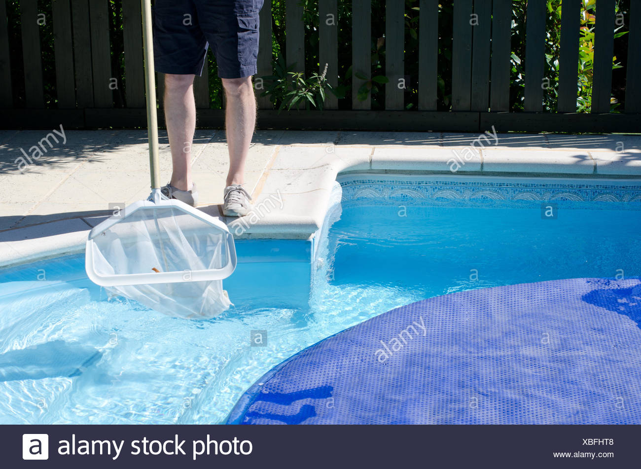 Pool Cleaner Cleaning Net Swimming Stockfotos & Pool Cleaner ...