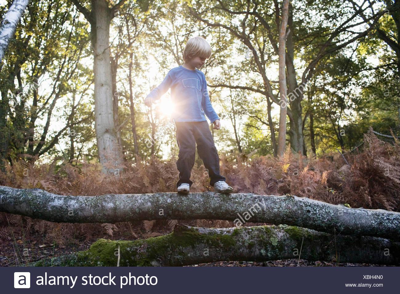 Junge auf umgestürzten Baum Stockbild