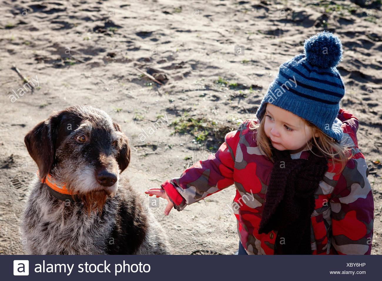 Junges Mädchen streicheln Hund Stockbild
