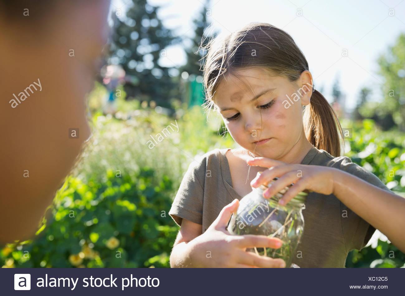 Kleines Mädchen fangen Bugs im Gemeinschaftsgarten mit Glas Stockfoto