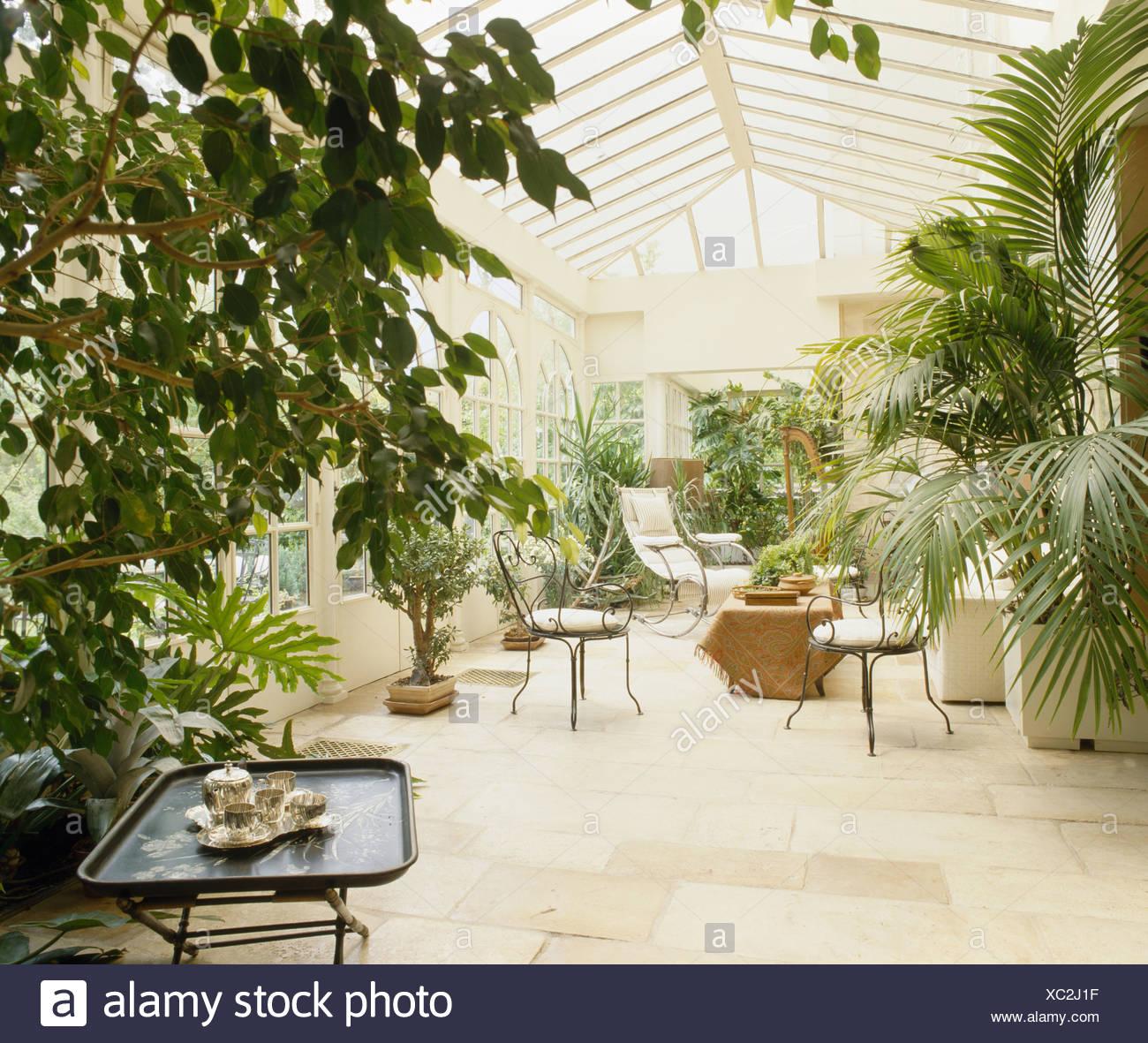 gro e zimmerpflanzen in gro en traditionellen wintergarten. Black Bedroom Furniture Sets. Home Design Ideas