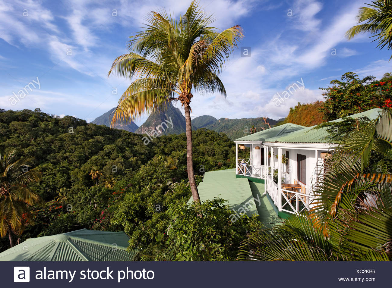 Bungalows, Palmen, Blick auf die Pitons Berge und den Regenwald Luxus Hotel Anse Chastanet Resort, LCA, St. Lucia Stockbild