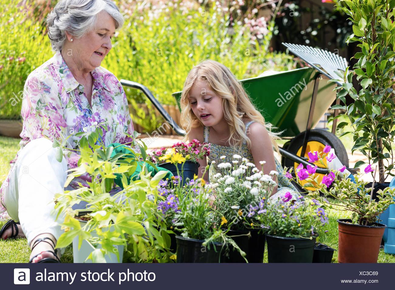 Großmutter und Enkelin Gartenarbeit zusammen Stockbild