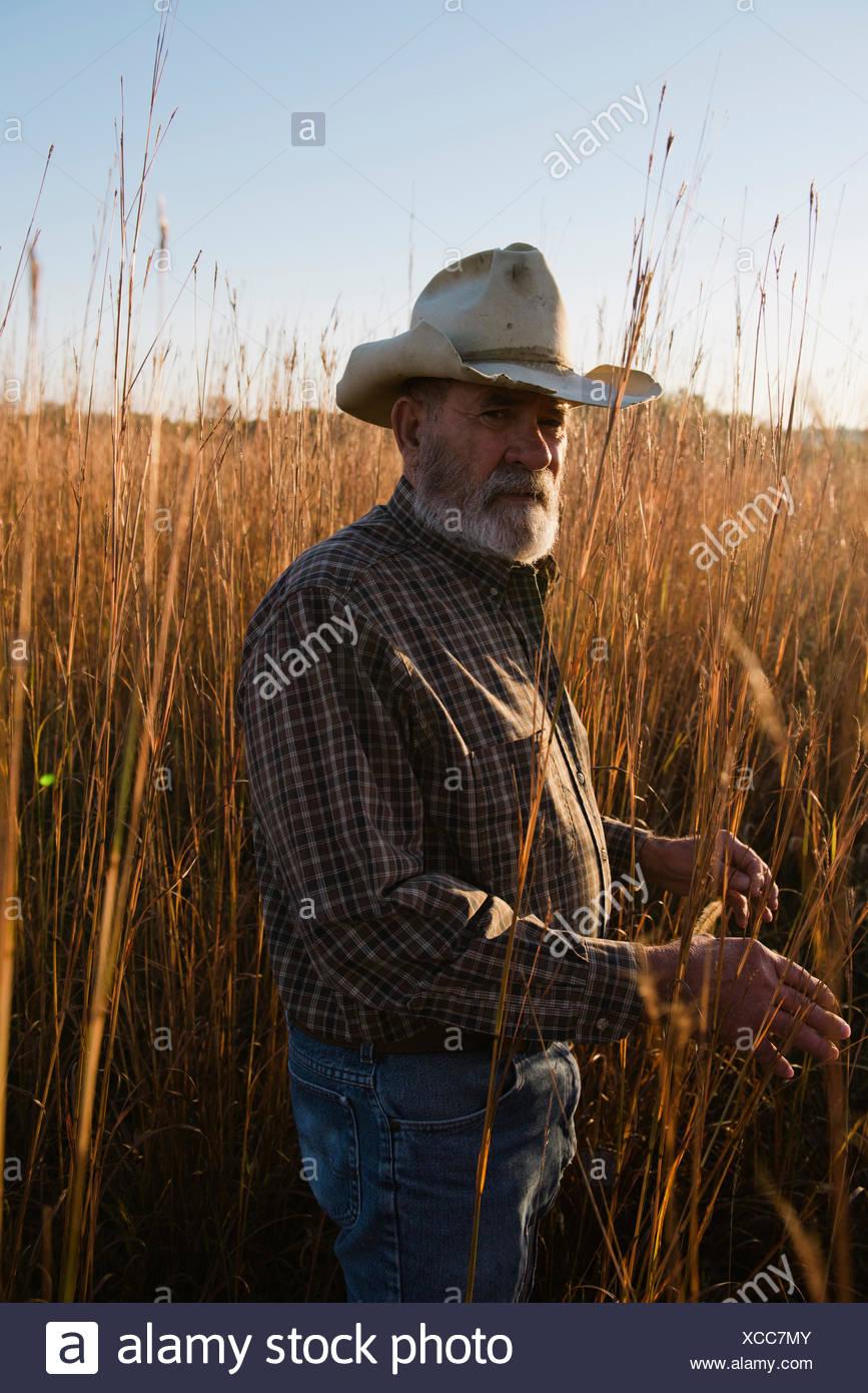 Porträt von senior männlichen Bauern lange Gras, Plattsburg, Missouri, USA Stockbild