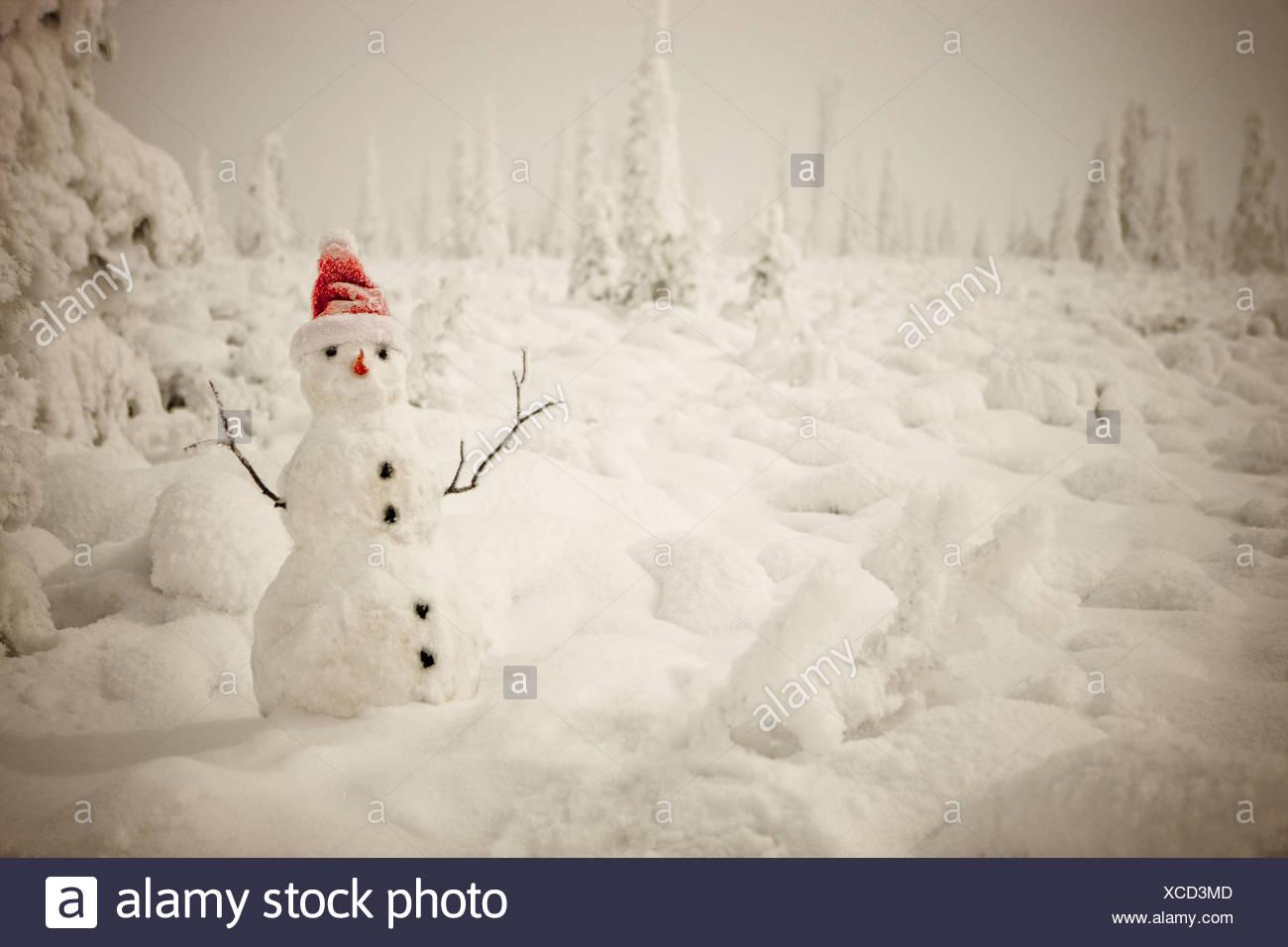 Fantastisch Frostig Der Schneemann Zum Ausdrucken Fotos - Druckbare ...