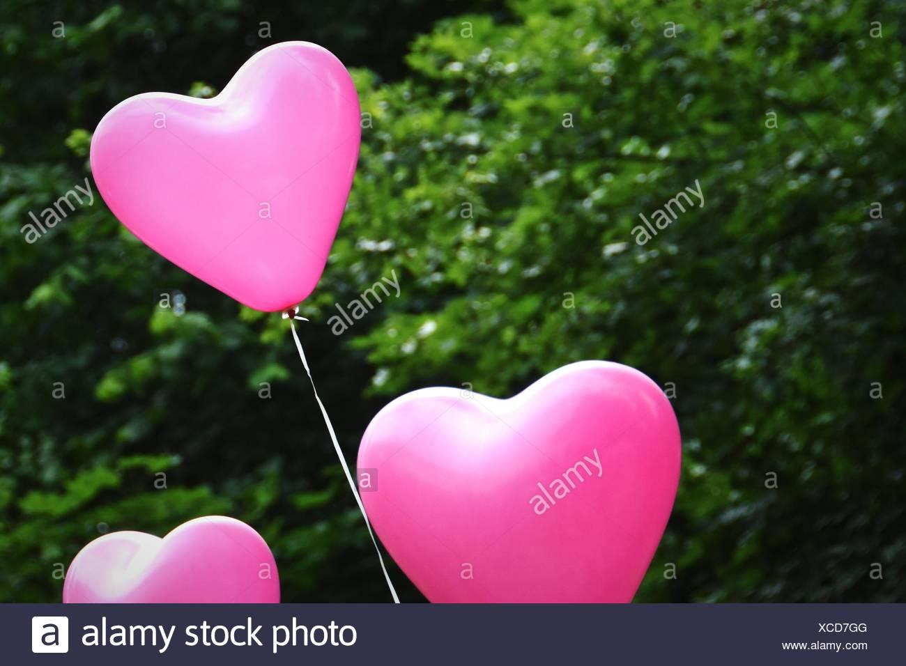 Luftballons in Herzform Stockfoto