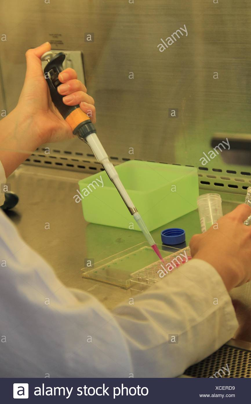 Zelle Biologie-Labor. Virus-Infektion der Zellkultur. Stockbild