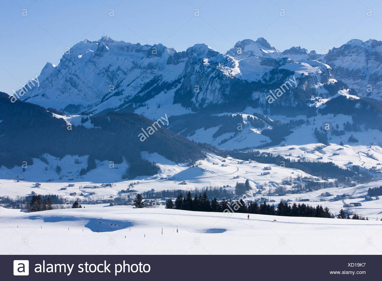 Säntis, Berg, Berge, Kanton Appenzell, Innerroden, Appenzell Bereich, Alpstein, Winter, Schweiz, Europa, Landschaft, land Stockbild