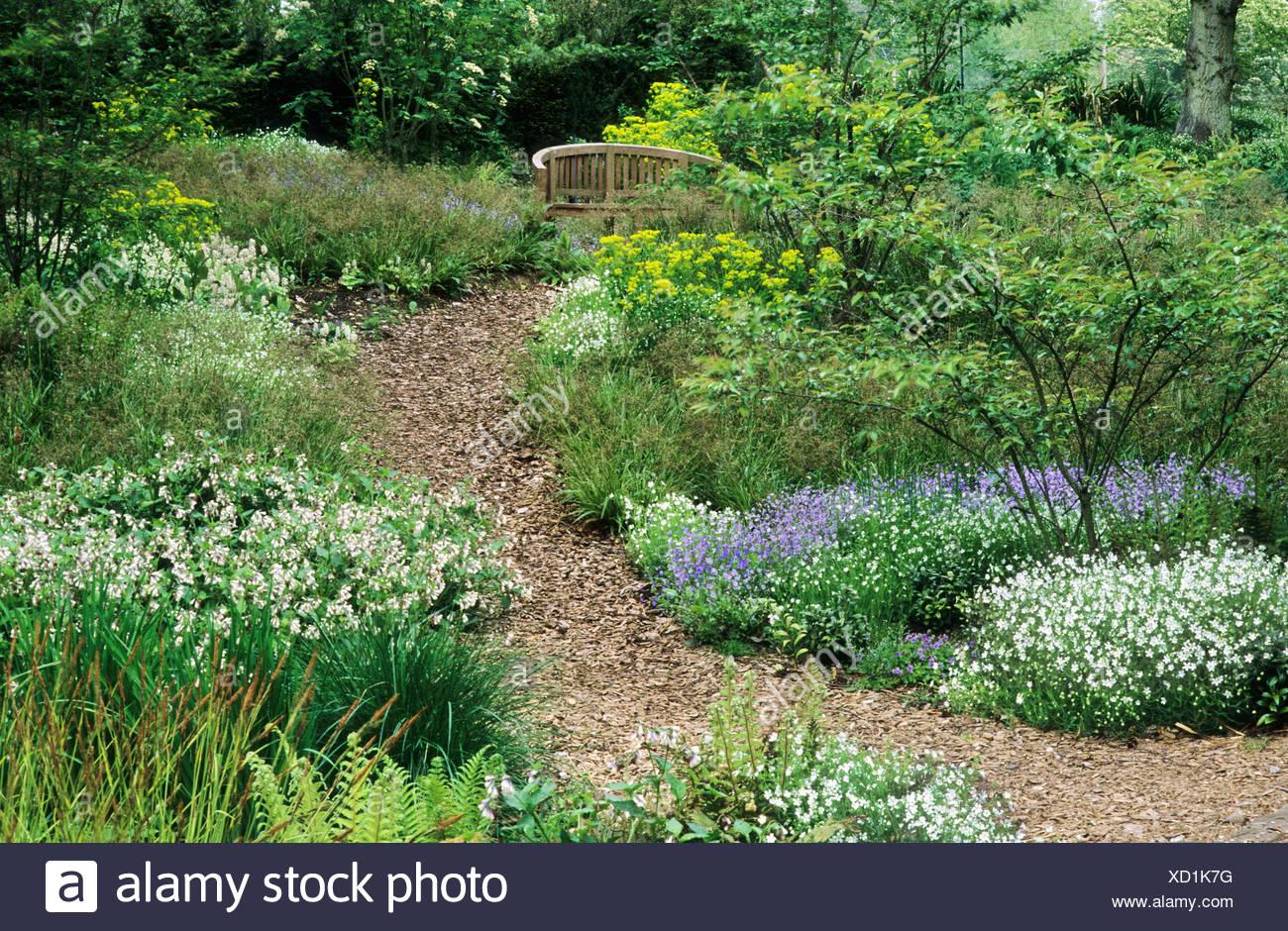 Wald Garten Rinde Hackschnitzel Pfad Symphytum Pulmonaria