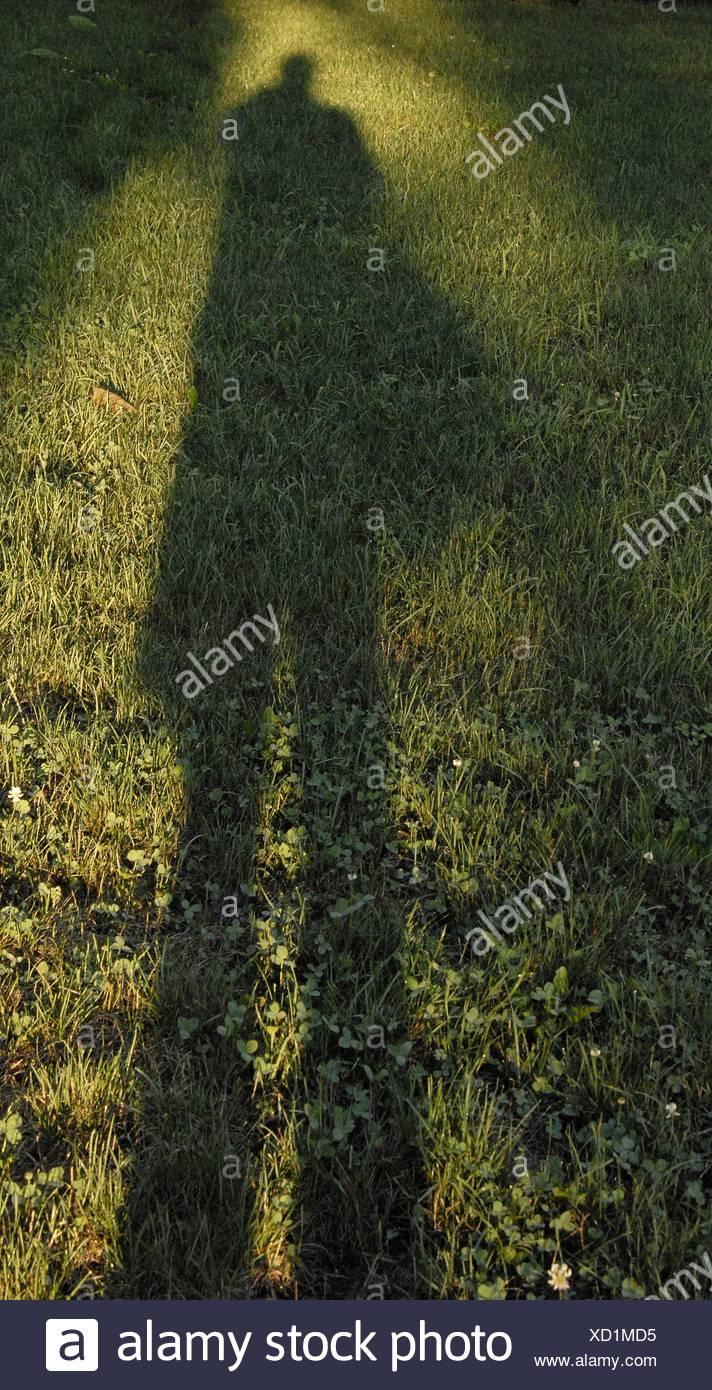 Dawn wirft einen langen Schatten Stockbild