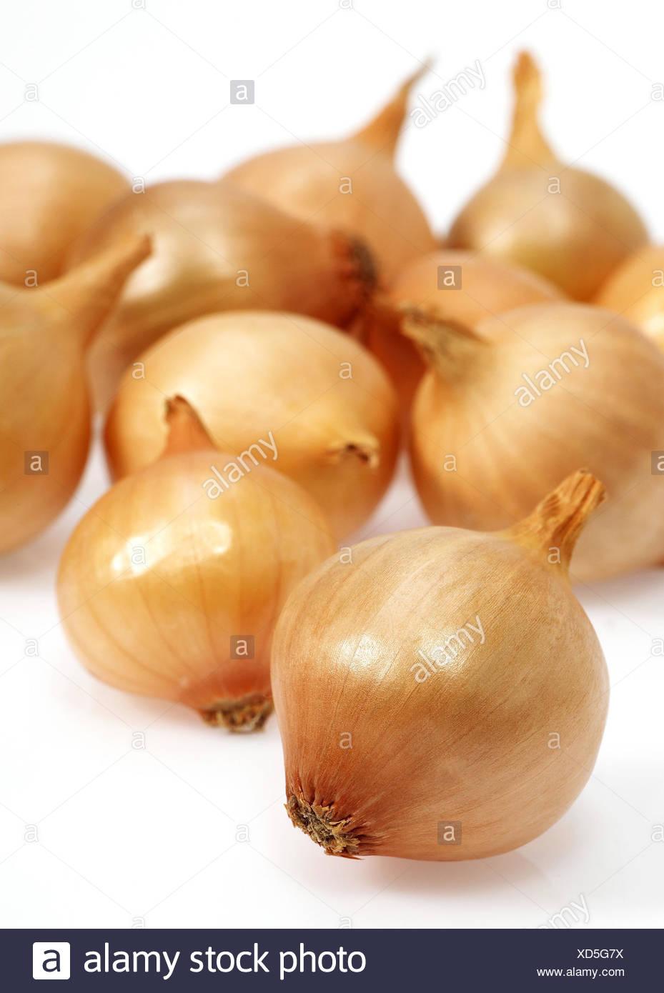 Zwiebel, Allium Cepa, weißer Hintergrund, Stockbild