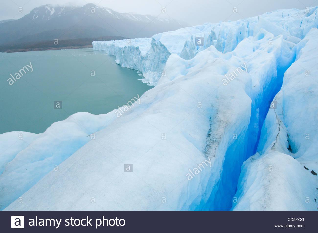 Die erstaunliche Perito Moreno Gletscher Parque Nacional Stockbild