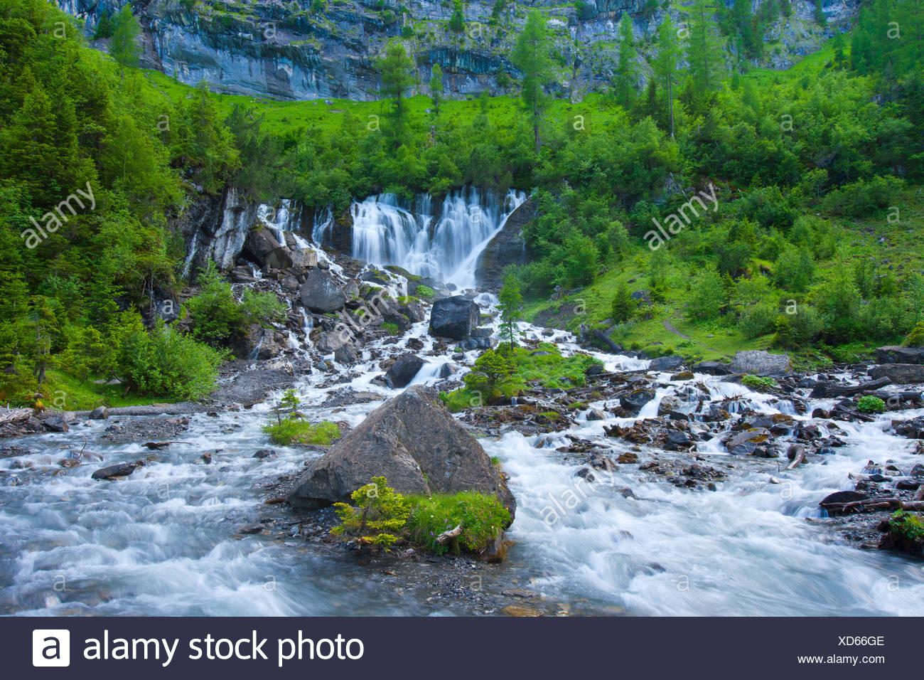 Sieben Brunnen, Sieben Brunnen, Schweiz, Kanton Bern, Berner Oberland, Simmental, Holz, Wald, Frühling, Quelle, Wasserfall, Bro Stockbild