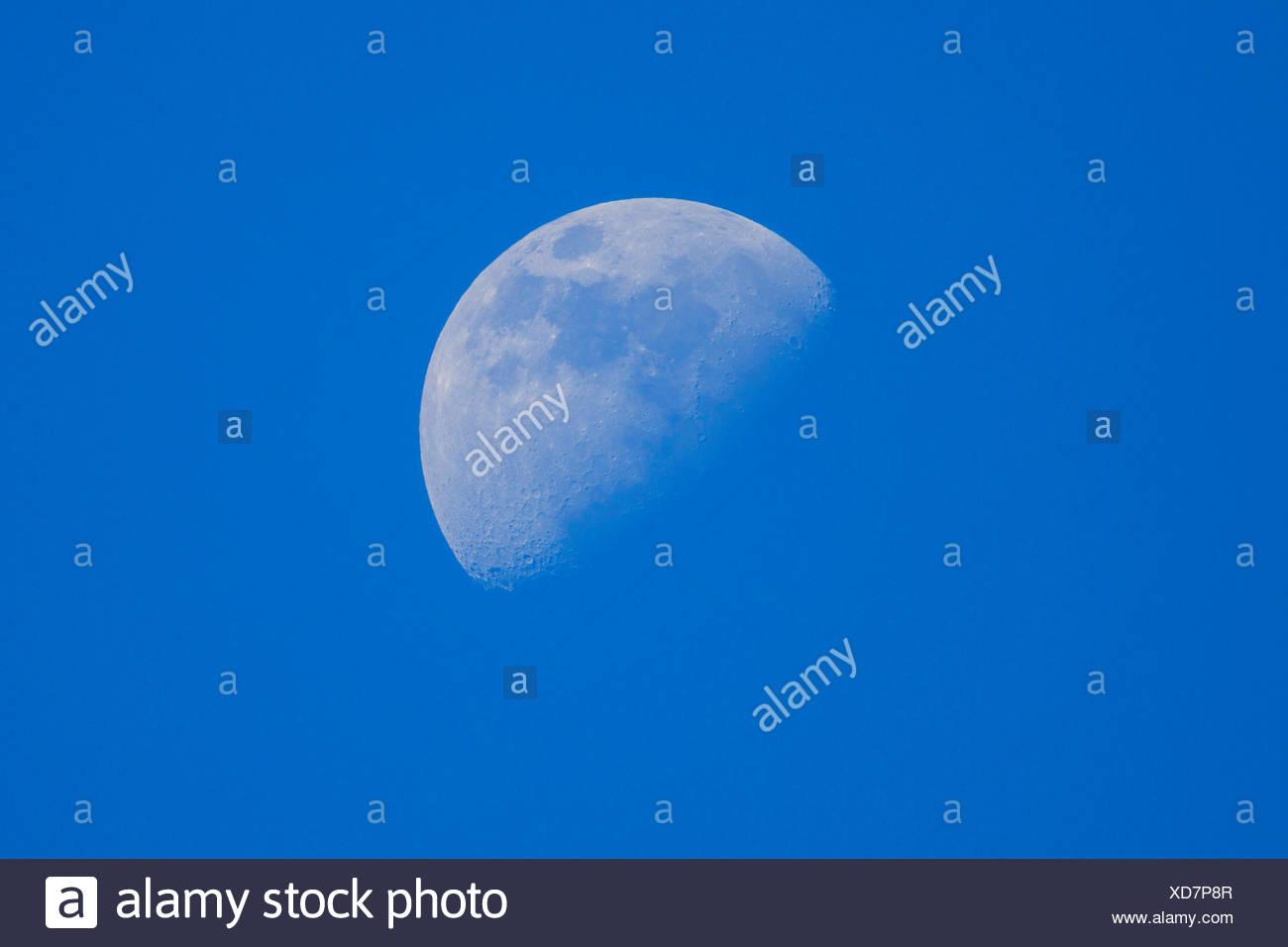 blauer Himmel und waxing Moon, Deutschland, Bayern Stockbild