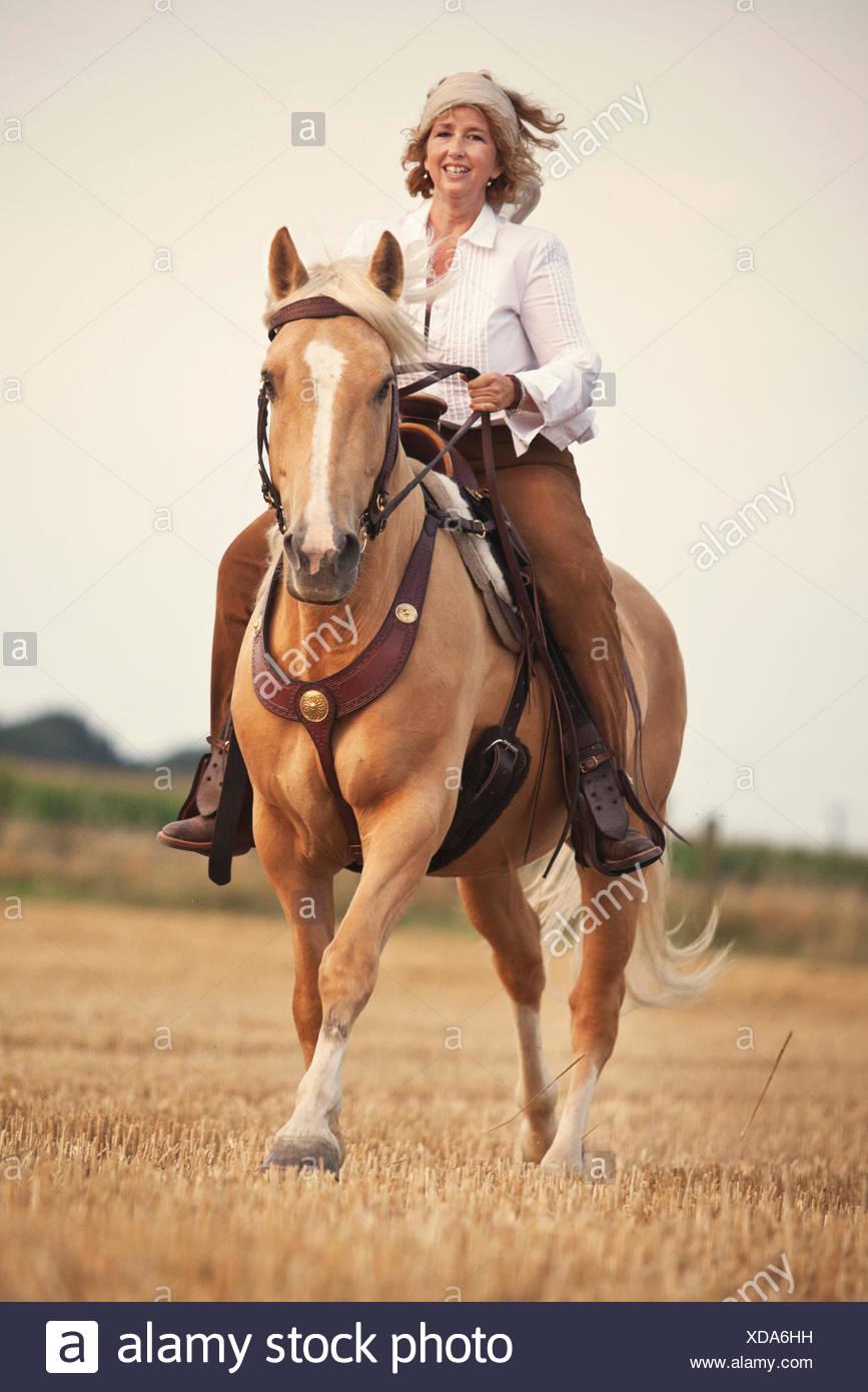 Western Reiter auf Criollo, Palomino mit Blesse, Wallach, galoppierend auf einem Stoppelfeld Stockbild